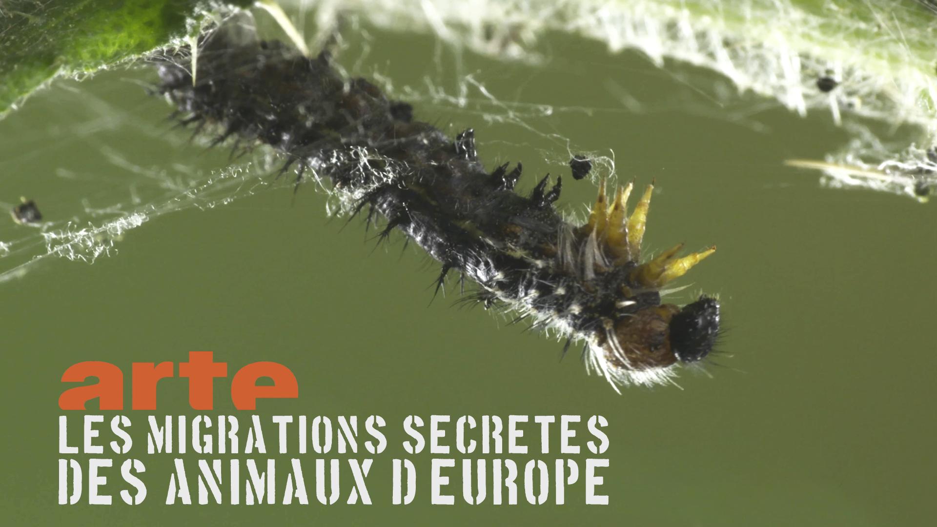 doc_migrations-secretes_small
